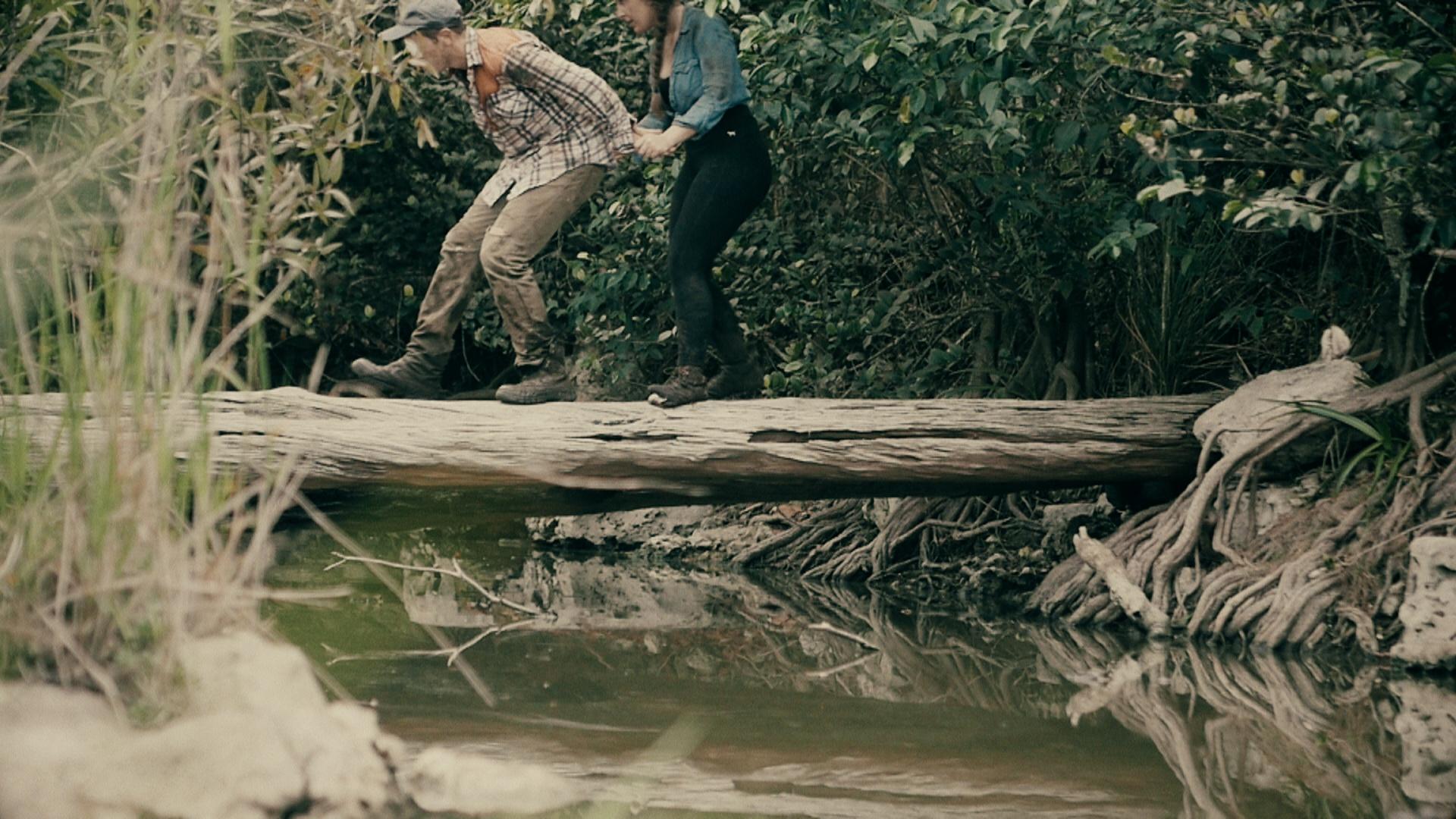 Swamp Killer